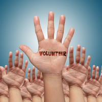 Volunteer Value